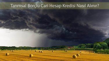 Tarımsal Borçlu Cari Hesap Kredisi Nasıl Alınır?