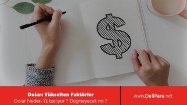 Doları Yükselten Faktörler Nelerdir?