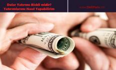 Dolar Yatırımı Riskli midir? Yatırımlarımı Nasıl Yapabilirim
